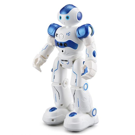 Singing and Dancing Remote Control Robot